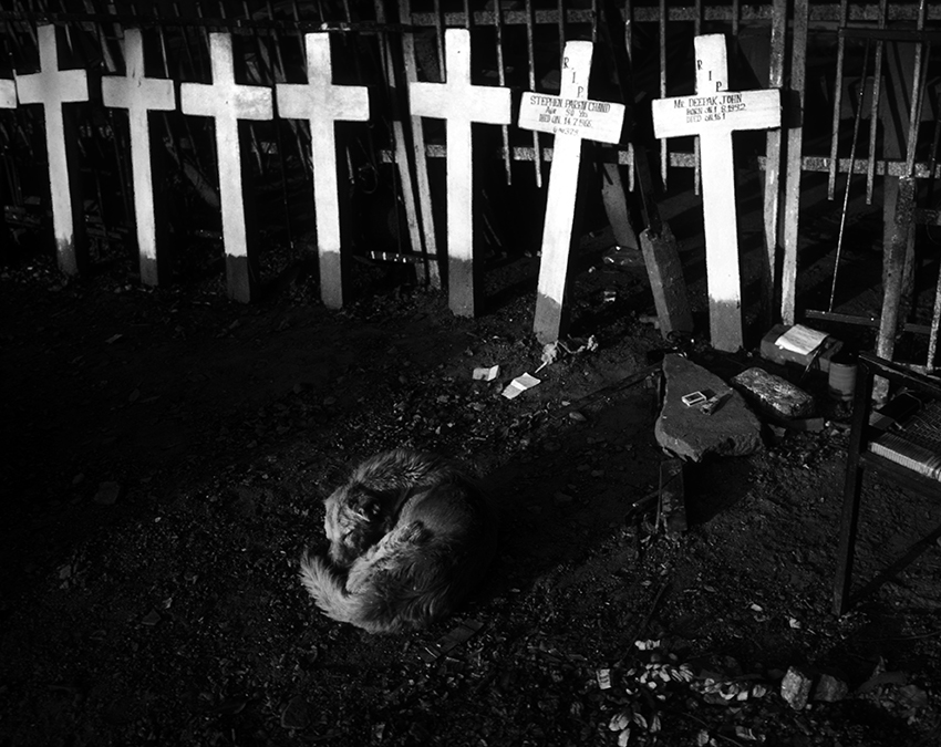 """Christian Graveyard""  New Delhi, India  photo copyright : Russell Shakespeare"