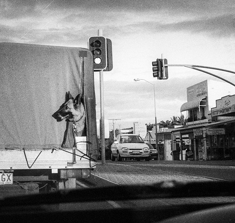"""View from my car window"" Greenslopes. Brisbane. photo copyright : Russell Shakespeare"